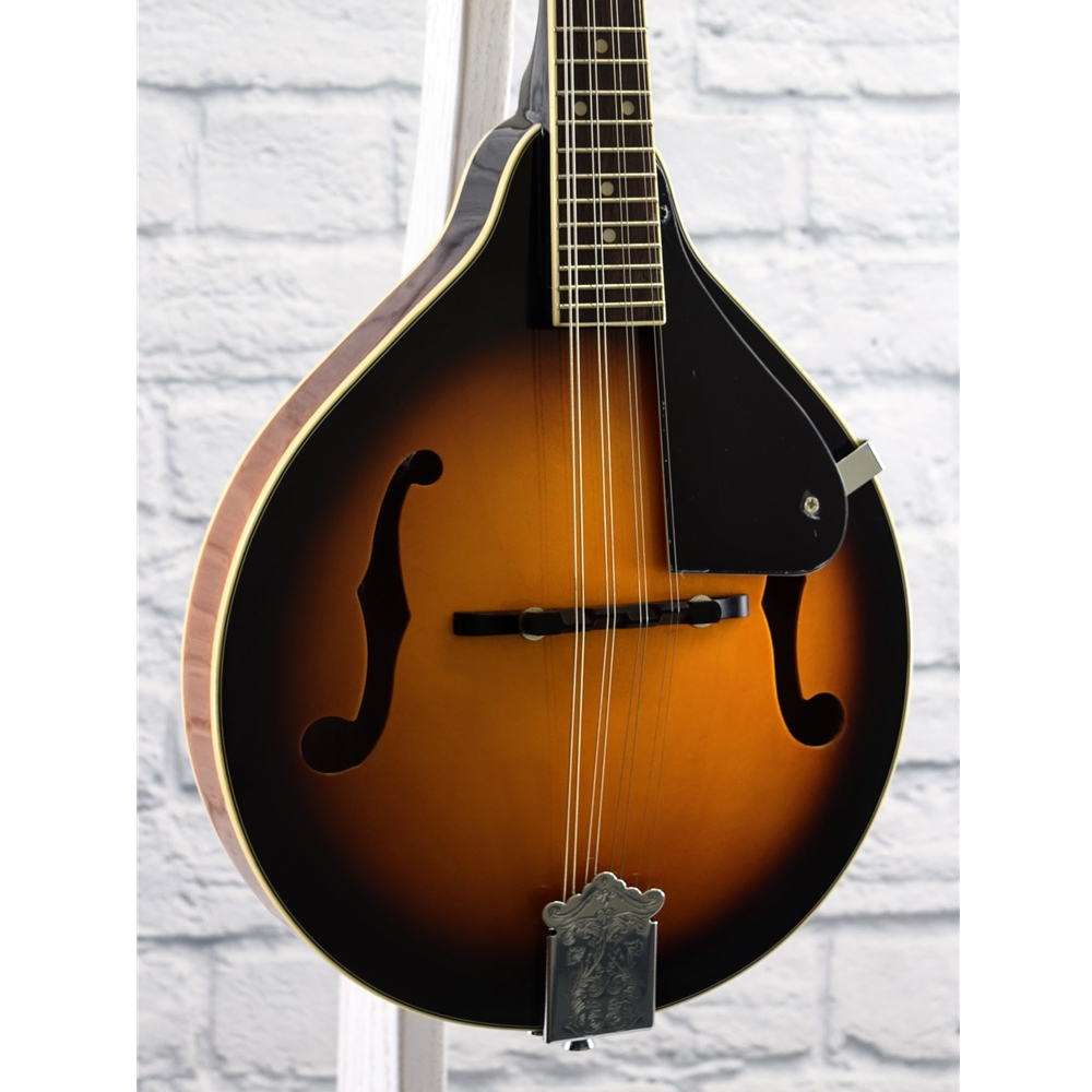 Savannah A Mandolin Sa100